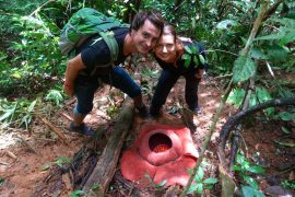 Cameron Highlands Malaysia Rafflesia und Teeplantage