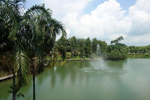 Singapur Sehenswürdigkeiten Marina Bay Gardens by the Bay