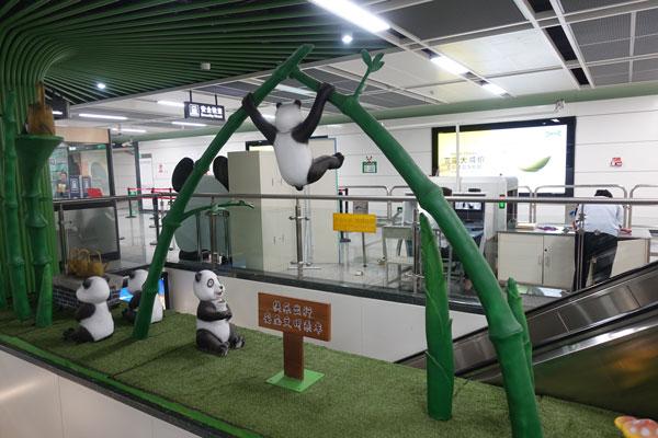 Pandabären in Chengdu Pandaaufzuchtsstation U-Bahnstation