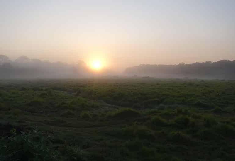 Chitwan Nationalpark – Der Dschungel Nepals