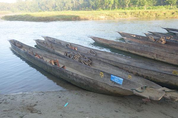Reisebericht Nepal Sehenswürdigkeiten Chitwan Nationalpark