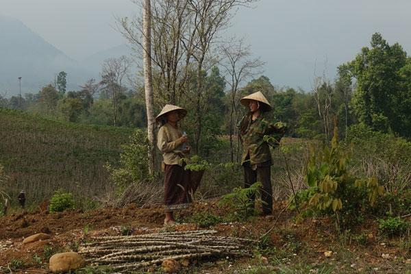 Reisebericht Laos Loop in Laos Rückweg nach Thakhek