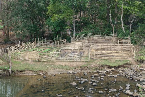 Reisebericht Laos Sehenswürdigkeiten Pakse Bolaven Plateau Vat Phou Champasak