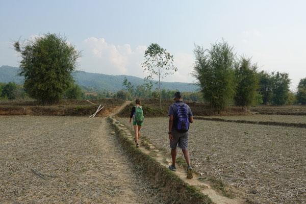 Reisebericht Laos Sehenswürdigkeiten Ebene-der-Tonkruege-Jarsite-3-Landschaft