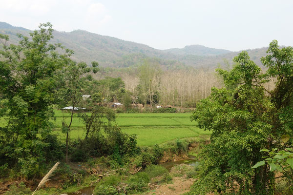 Reisebericht Laos Sehenswürdigkeiten Luang-Prabang-Kuang-Si-Waterfall-unterwegs