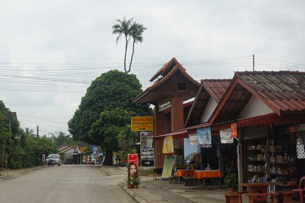 Reisebericht Laos Sehenswürdigkeiten Vang-Vieng-Laos-Stadtbild-Kokos-Palme