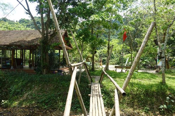 Reisebericht Vietnam Sehenswürdigkeiten Phong Nha Nationalpark Botanischer Garten