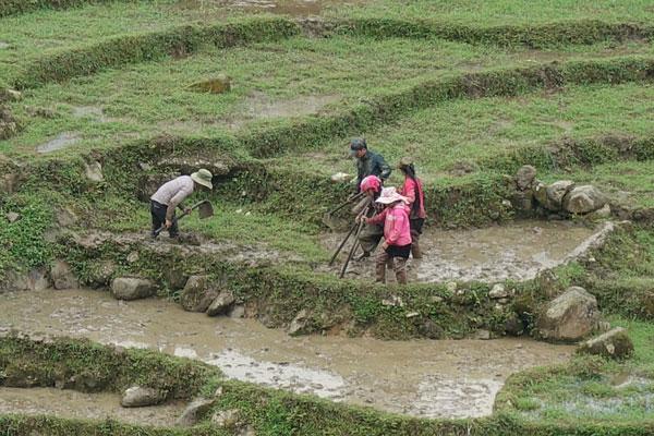 Reisebericht Vietnam Sehenswürdigkeiten Sapa Tagestour-Tan-Van