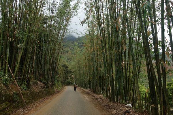 Reisebericht Vietnam Sehenswürdigkeiten Sapa Tagestour-unterwegs