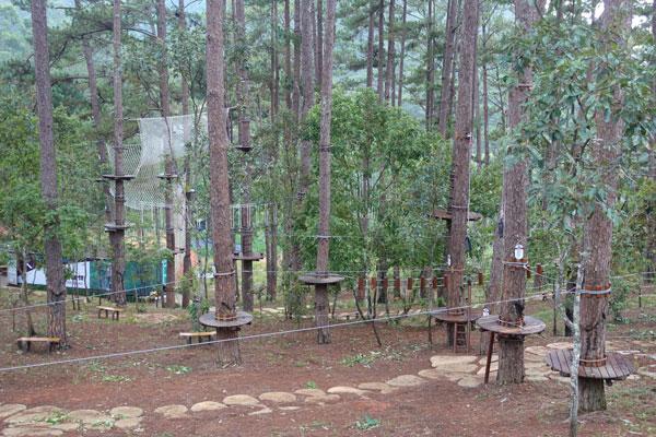 Reisebericht Vietnam Sehenswürdigkeiten Da Lat Datanla Waterfall Hochseilgarten