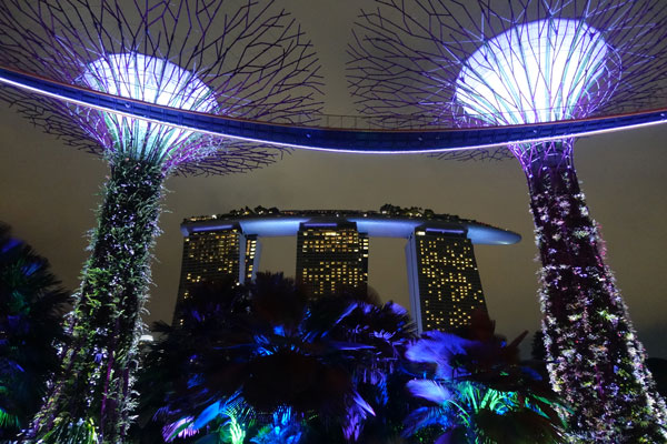 Singapur Sehenswürdigkeiten Marina Bay Gardens by the Bay Sky Trees