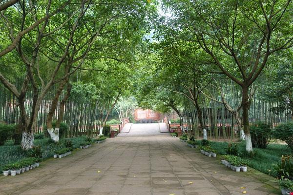 Oriental Buddhist Park Tagesausflug von Chengdu