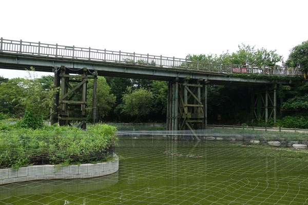 DMZ Tagestour von Seoul Imjingak Park Freedom Bridge