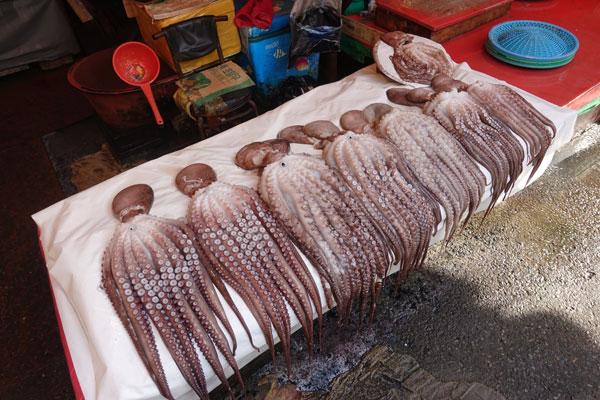 Busan Sehenswürdigkeiten Jagalchi Market