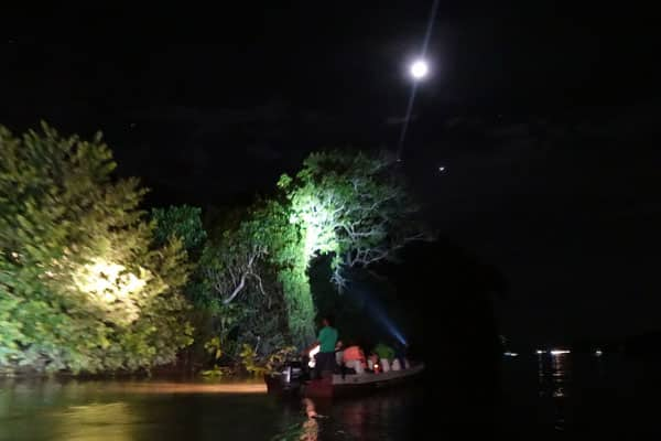 Kinabatangan River Tour Sabah Night Cruise