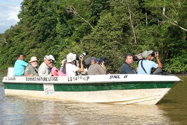 Kinabatangan River Tour Sabah Sunset Cruise